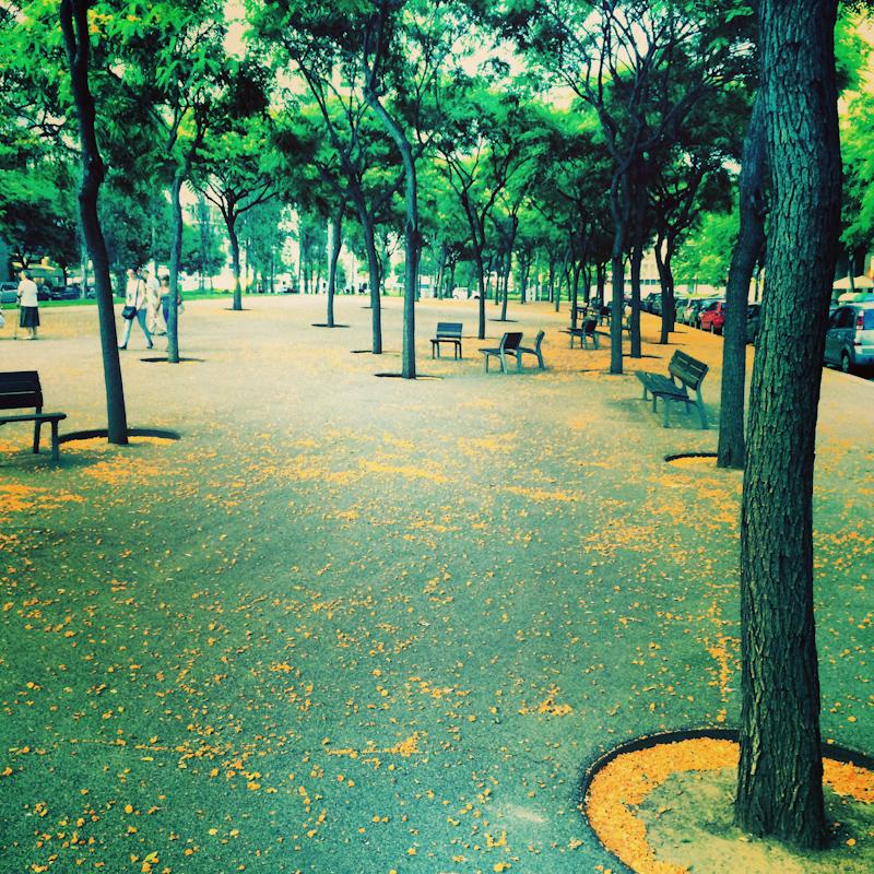 Park tu aj začiatkom leta vyzerá ako na jeseň.