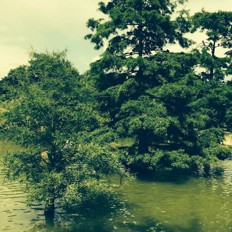 Ciutadella Park je perfektné miesto na nedeľný relax.
