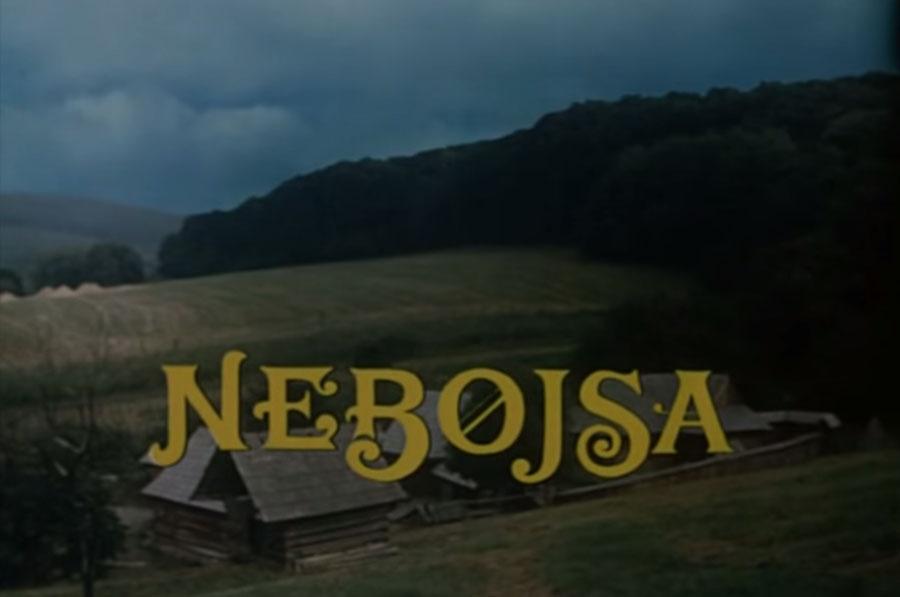 Nebojsa - 1988