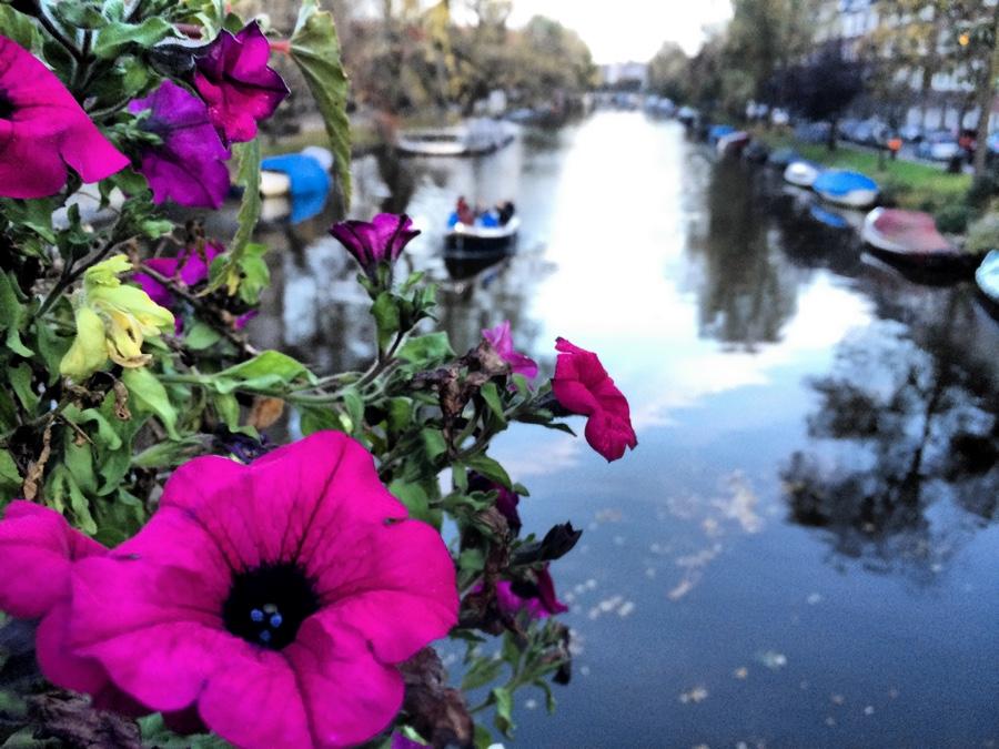 Amsterdam stojí cez jeseň za návštevu